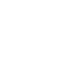 Friendship Fever