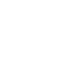 Friendship Fever